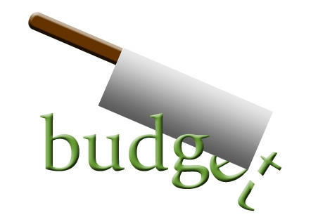 how to make personal budget cuts