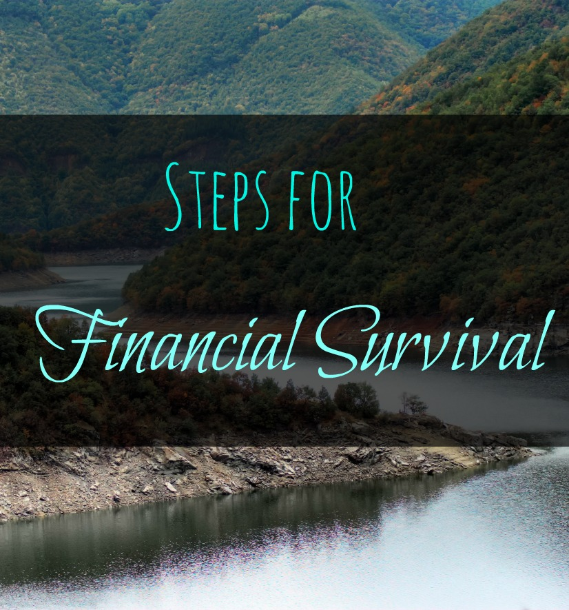 You can set yourself up for success with your money by employing these 9 simple steps for financial survival. Plus get 5 quick tips for lessening expenses!