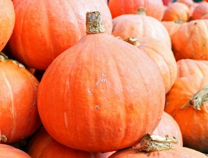 pumpkins-469593_1280