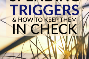 Everyone has spending triggers. They're unavoidable. The key is to identify them and keep them in check. Here are 8 common ones to watch out for!