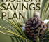 Are you stressing because your holiday savings plan is non-existent? Don't worry. The plan is provided for you here so you can save enough in time for the holidays.