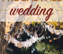 Instead of trying to squeeze your wedding ceremony in during the summer, consider having a frugal fall wedding instead. Here are some ideas you can use.