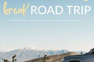 What are you waiting for? Stop putting off your idea of taking a road trip. Check out these easy tips to have a frugal spring break road trip.