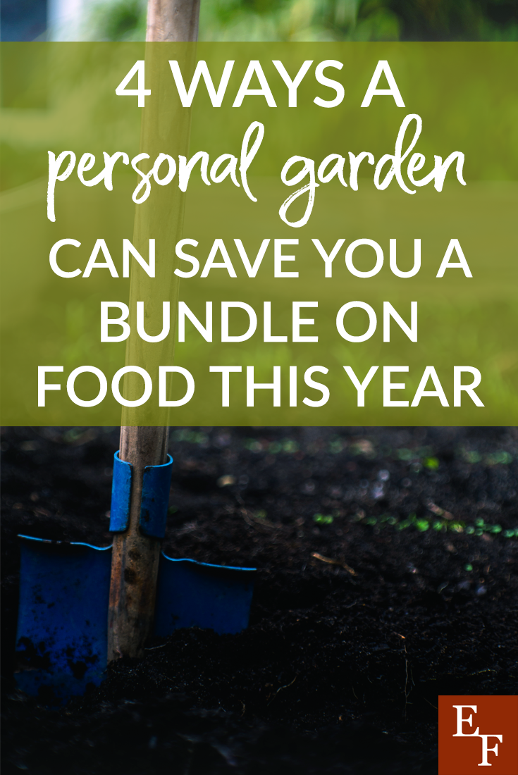 We are all looking for ways to eat healthier and save money. Here are 4 ways gardening can save you money and help you eat healthier too!