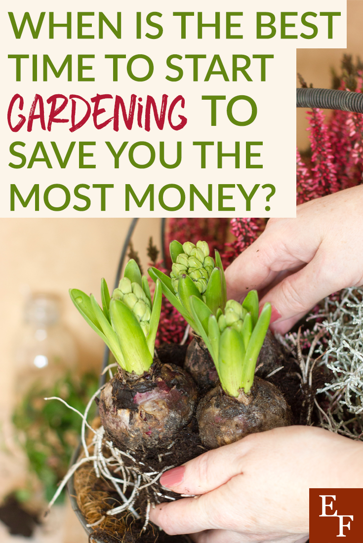 Spring is almost here! So, now is a great time to begin starting your garden and save you more money. We have some great tips to help!