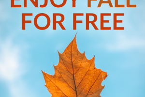 Fall, and cooler weather, are right around the corner. We give you a few great ways to enjoy fall for free to maximize your fun, but not kill your wallet.
