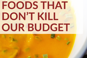 While we all love a great Thanksgiving feast, it can get expensive! So here are some of our favorite Thanksgiving foods that don't kill our budget.