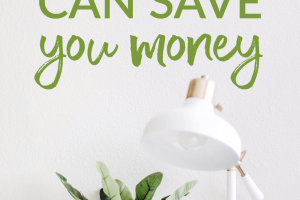 Spring is right around the corner! And with that comes the annual spring cleaning. Here are some great tips to help you save money by spring cleaning.