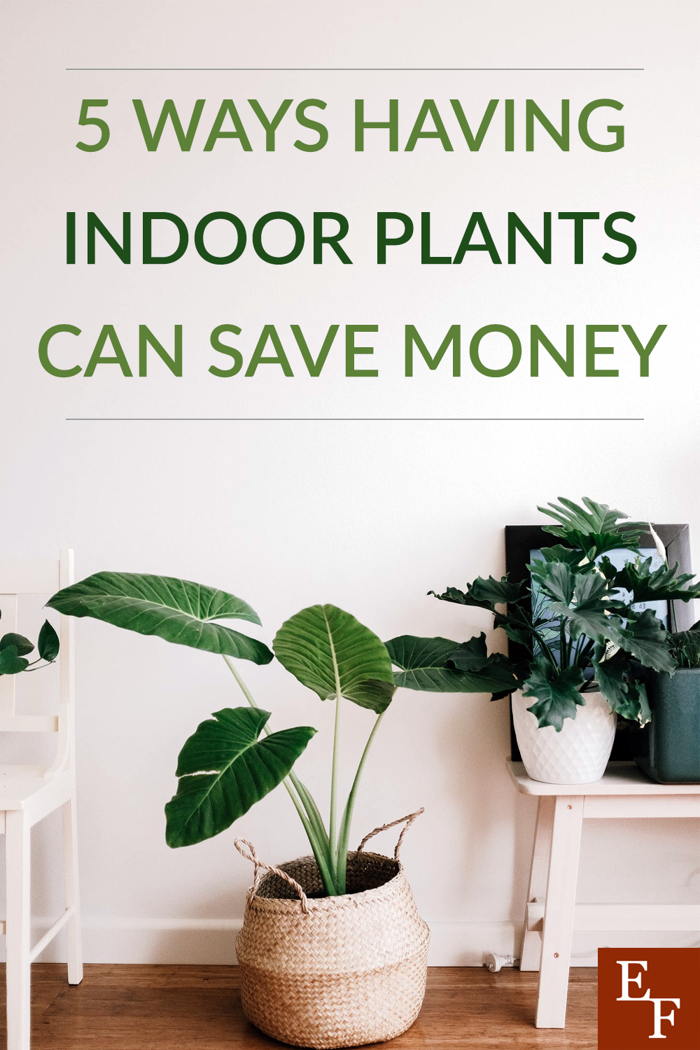 When it comes to saving money at home, there is one surprising area most of us overlook. Here's how having indoor plants can save you money.
